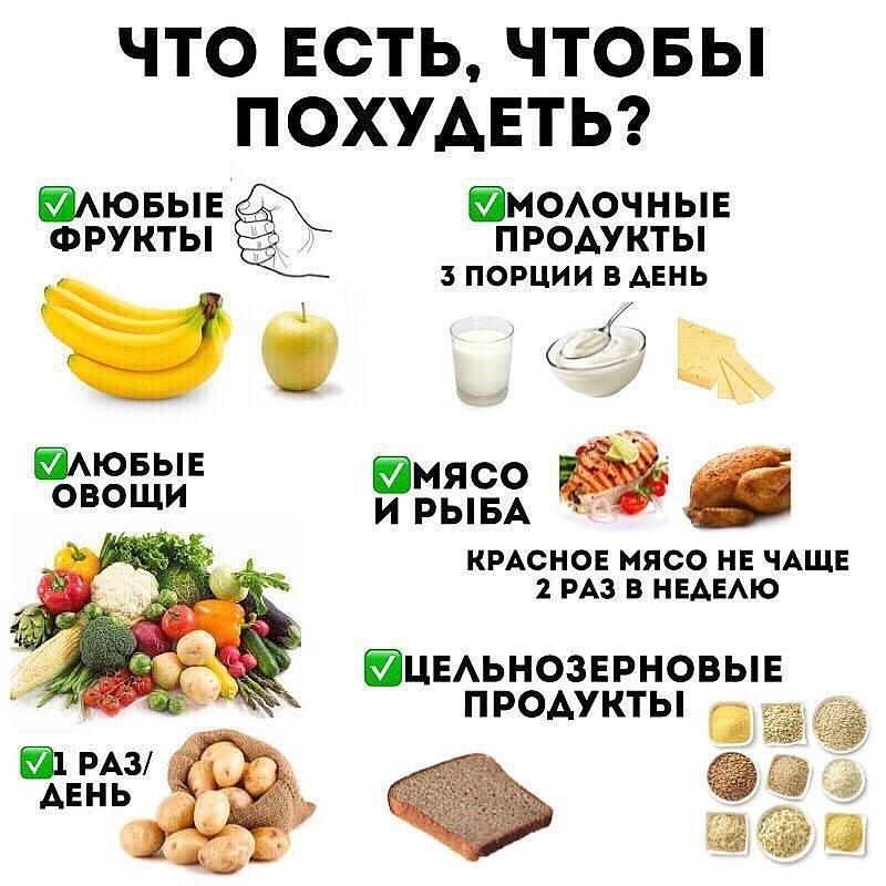 Какие фрукты можно есть на диете любимая