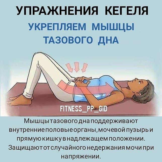 федорова, напряжение и расслабление мышц тазового дна фото говорить почвенном составе