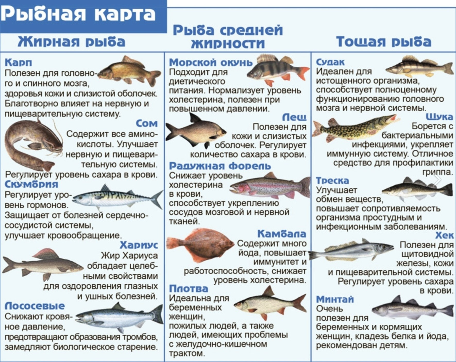 Какую рыбу варить для диеты