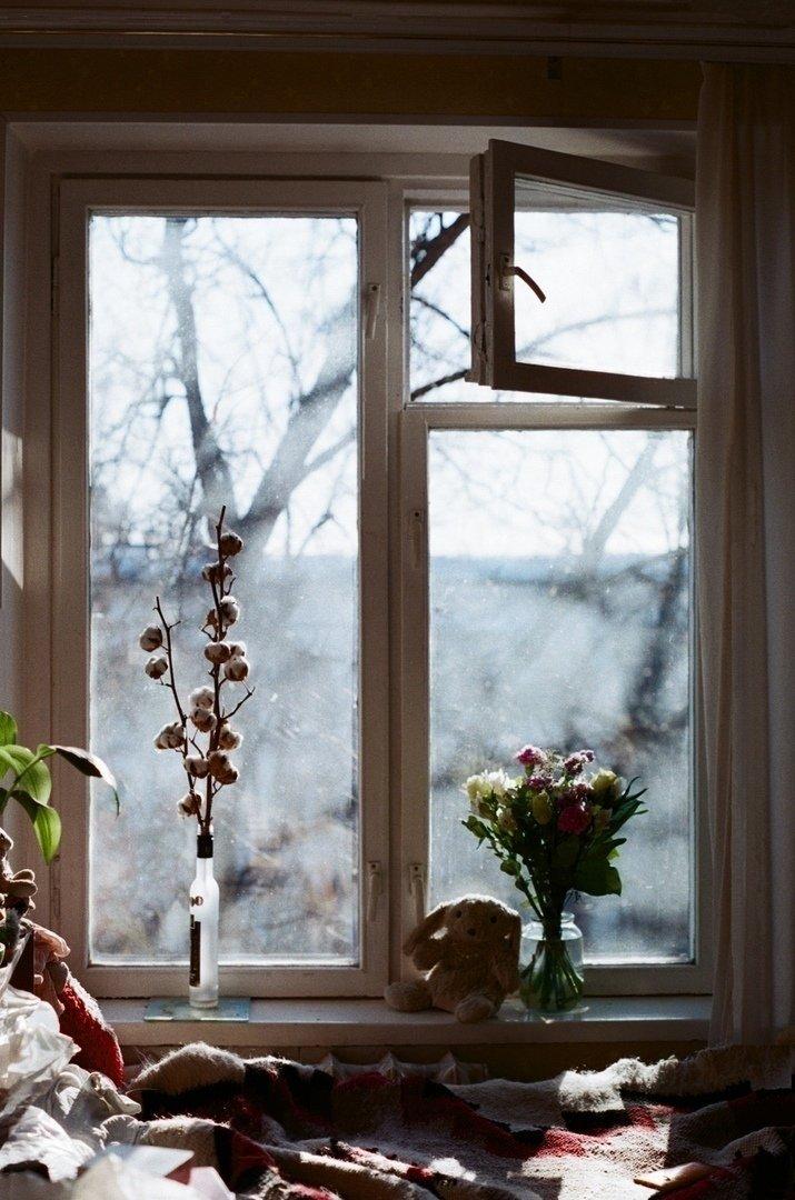 следующий картинки окно писателя правой