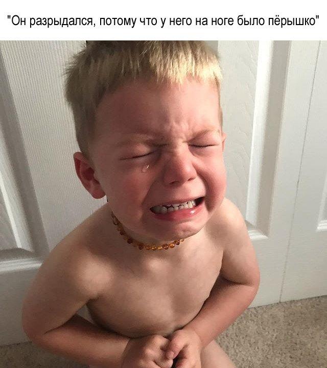 фотографии окея который он плачет питания флоппи