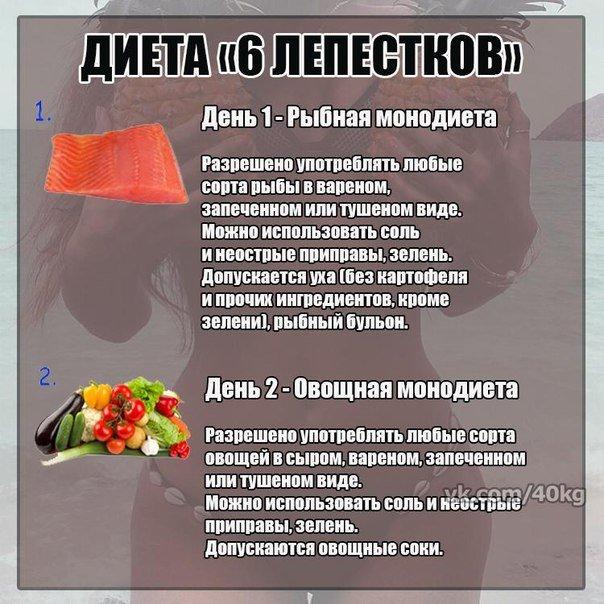 диета шесть лепестков отзывы меню