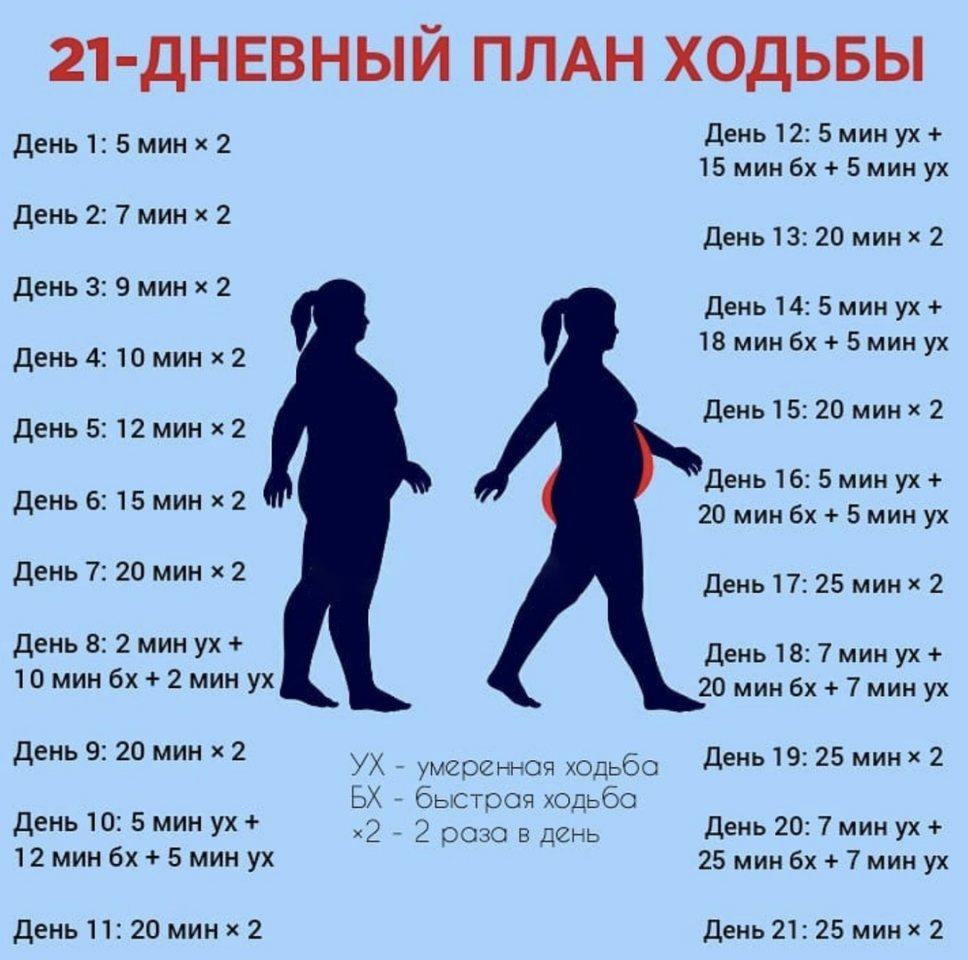График Ходьбы Для Похудения.