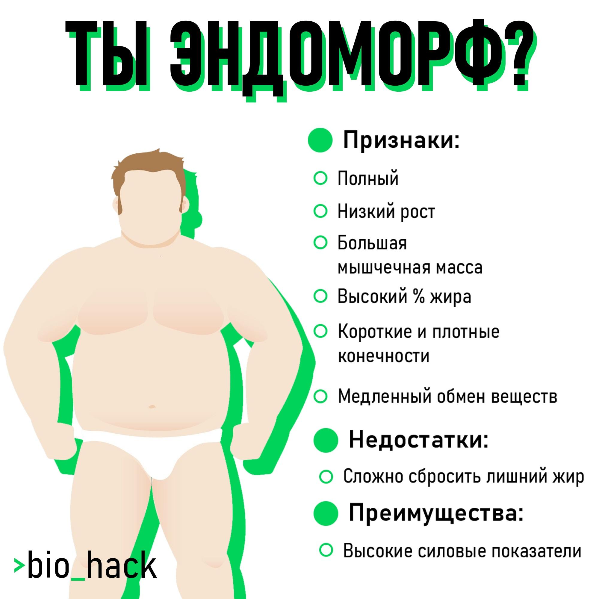 Эндоморф Питание На Похудение. В чем особенности правильного питания для эндоморфов?