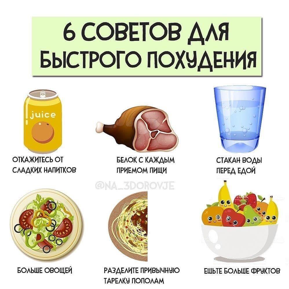 Основы Основ Похудения.