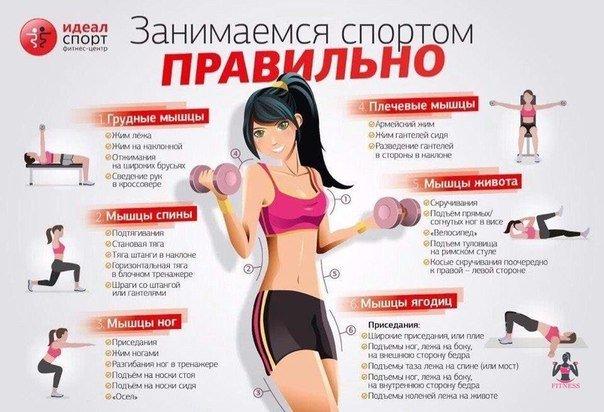 Похудеть мышцы в домашних условиях 860